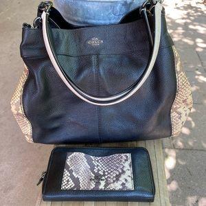 Coach Snake Print Bag/Wallet set 🐍